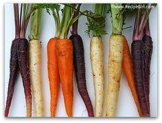 Inspiration for gardening season: Multi-colored carrots!