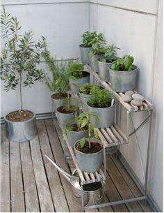 Image result for balcony farming