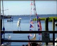 Southport, NC - sleepy little boating and beach town (where Safe Haven was filmed)
