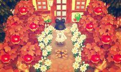 Animal Crossing Inspiration : Photo