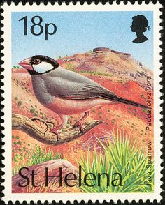 Java Sparrow stamps - mainly images - gallery format Saint Helena Island, St Helena, Wild Creatures, Love Stamps, Postcard Design, European History, Artist Trading Cards, Printable Stickers, Stamp Collecting