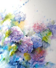 Hydrangeas - Watercolor  -