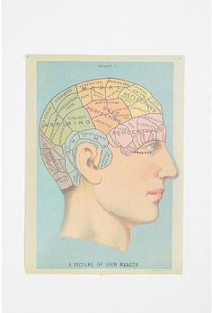 Phrenology Head Poster- because who doesn't need now defunct sciences on their wall?