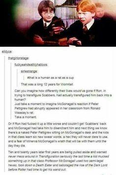 Professor McGonagall people I don't think she would kill him Harry Potter Jokes, Harry Potter Fandom, Harry Potter World, No Muggles, Fiction, Yer A Wizard Harry, Harry Potter Universal, Mischief Managed, Book Fandoms