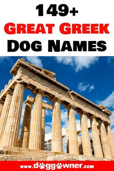 There are some amazing Greek dog names out there that can be the perfect fit for your new dog. Here is our list of the 149+ best great greek dog names. #dognames #dogs #greekdognames