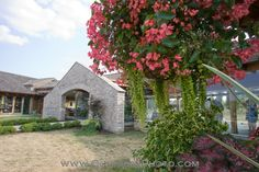 Cox Arboretum, Wedding, Wedding Photography, Wedding Location, Outdoor Wedding Location, Outdoors, Scenery, Flowers