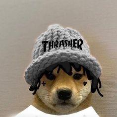 Famous Dogs, Epic Games Fortnite, Rap Wallpaper, Apartment Bedroom Decor, Aesthetic Gif, Doge, Memes, Avatar, Pup