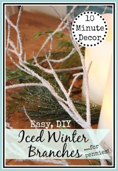 Using free branches from your yard and a common drugstore or grocery store product, you can create beautiful and realistic Iced Winter Branches for pennies!