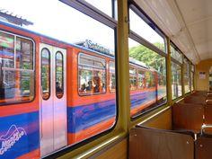 """""""Treno"""" Monte Generoso→Capolago, Lugano Ticino Swiss"""