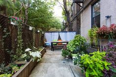 This charming backyard was designed to act as a comfortable and inspiring escape from the city.