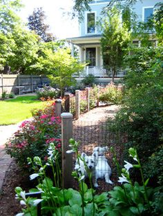 Dogs! - traditional - landscape - chicago - by Pat Bernard Design, Inc.