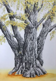 """Ginkgo biloba"" by Sharon Egan. Paintings for Sale. Maidenhair Tree, Upcoming Artists, Dont Fall In Love, Yellow Leaves, Buy Art Online, New Opportunities, Paintings For Sale, Online Art Gallery, Watercolor Paper"