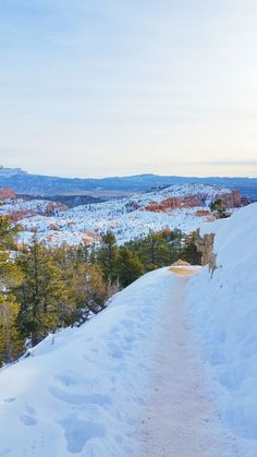 What's it like to winter hike the hoodoos in Bryce Canyon on Queens Garden Trail? Winter Hiking, Winter Travel, Us National Parks, Winter Photos, Bryce Canyon, Winter Landscape, Culture Travel, Nature Photography, Travel Photography