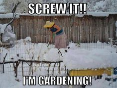 So sick of this snow--time to garden anyway!