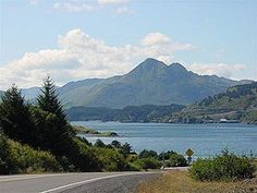 Kodiak Tours is sure to take you on an adventure around the town. See the museums, harbors, and canneries!