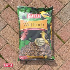 Best bird seed to use in the spring months to attract those bright yellow finches. Yellow Finch, Wild Bird Feeders, Spring Months, Finches, Backyard Birds, Wild Birds, Bright Yellow, Seeds, Garden