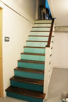 Ombre basement staircase - Shady Business: Ombre Staircase Renovation