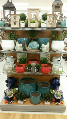 Green Thumb End Cap Tj Maxx