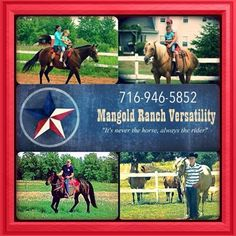 Horseback Riding Lessons  All year round (indoor-outdoor rings) Located in Lockport, NY $40 for an hour  www.mangoldranchversatility.com