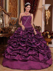 e8e25ee0f9b 2013 Dark Purple One Shoulder Taffeta Quinceanera Dress with Pick-ups  Burgundy Quinceanera Dresses
