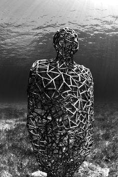 Overview + Latest Works - Underwater Sculpture by Jason deCaires Taylor Black White Rooms, Black And White, Jason Decaires Taylor, Underwater Sculpture, Striped Room, Scuba Diving, Sculptures, Mexico, History