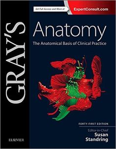 Gray's Anatomy The Anatomical Basis of Clinical Practice 41st Edition PDF