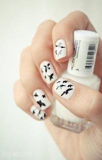 Nailpolish, white with black birds find more women fashion ideas on www.misspool.com