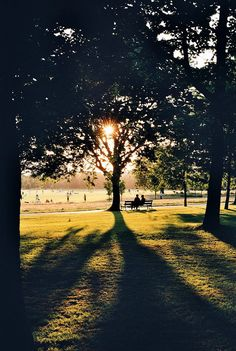 Regents Park, London - sunset.