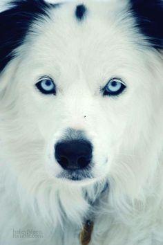 Oh those eyes <3