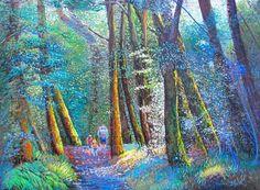Beech Forest Walk