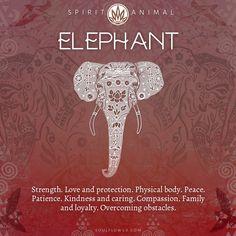 Elephant Spirit Animal, Elephant Quotes, Elephant Tattoos, Quotes About Elephants, Spirit Animal Tattoo, Elephant Symbolism, Elephant Meaning, Animal Symbolism, Image Elephant