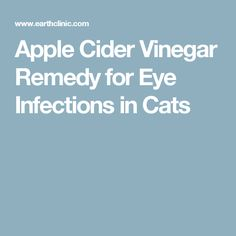 Apple Cider Vinegar Remedy for Eye Infections in Cats