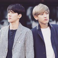 Sehun & Chanyeol lol