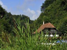 les 3 canards Fribourg Restaurants, 3 D, Cabin, House Styles, Home Decor, Decoration Home, Room Decor, Restaurant, Cottage