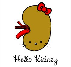 bladder infection and kidney pain - how long do you live on dialysis.how does kidney dialysis work 5576032428 The Awkward Yeti, Organ Donation, Science Jokes, Biology Jokes, Chemistry Jokes, Science Geek, Kidney Health, Kidney Foods, Haha