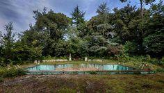 Luonto on ottanut vallan uima-altaalla.
