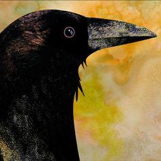 C P Guthrie Design: Crow Tile