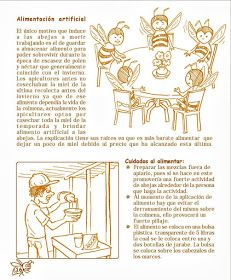 La Familia de la Apicultura - The Beekeeping of Family: Manual Apícola Ilustrado - Beekeeping Illustrated Manual. Beekeeping For Beginners, Bee Boxes, Bee Farm, Places In Europe, Family Traditions, Queen Bees, Bee Keeping, Inventions, Old Things