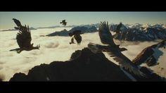 Morgan Loomis Animation Reel 2014 on Vimeo