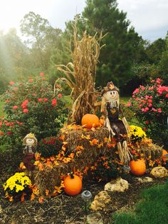 Fall display at driveway entrance with mums, pumpkins, corn stalks, hay, fall leaf garland, and scarecrows.
