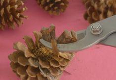Dennenappel decoratie alleen in de herfst? Niet met deze gave dennenappel…