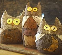 Primitive Life in the Hollow: Owls, Owls and more OWLS!