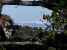 Ausblick aus der Umgebung von Aix-en-Provence auf die Schneeberge der Alpes de Haute-Provence. #Provence #Aroma #Olivenoel #Onlineshop #Forcalquier #Naturkosmetik
