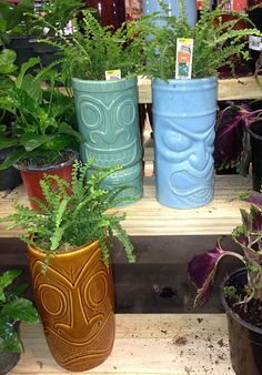 tiki-planters from Home Depot?! Yes, please!