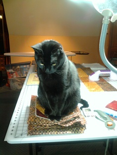 .Quilters helper... no block gets away! | black kitty.