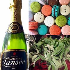 Something bright for this rainy London day! Colour schemes can be small accents to style your day rather than everything colour coordinated! #lanson #macarons #mint #homemade #moodboard #colourinspiration #colorinspiration #weddingstyling #weddingcolours #weddingcolors #green #weddinginspiration #weddingdecor #weddingblog #weddingblogger #londonblog #londonblogger #devinebride