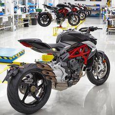 """1,268 Likes, 33 Comments - Grid Motors  (@gridmotors) on Instagram: """"MV Agusta Brutale 800 ---------------------------------- Marque suas fotos com #GridMotors ou nos…"""""""