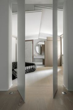   pivot doors  ... would be cool with paneling.