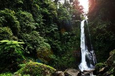 Bali Waterfalls – 10 Natural Places That Will Blow You Away