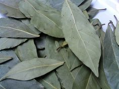 Free Image on Pixabay - Laurel, Aromatic Herbs, Spices Herbal Remedies, Natural Remedies, Trees To Plant, Plant Leaves, Magic Herbs, Laurus Nobilis, Aromatic Herbs, Bay Leaves, Natural Energy